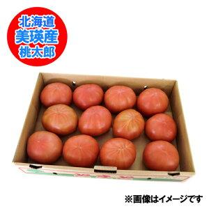 北海道産 とまと 送料無料 美瑛産 トマト 桃太郎 トマト 2Lサイズ 約15玉前後(4キロ) 価格 3240円 北海道 びえい とまと