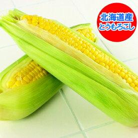 北海道 とうもろこし 送料無料 とうもろこし とうきび 北海道の黄色いとうもろこし 夢のコーン・ゴールドラッシュ・サニーショコラ トウモロコシ L/2L混合を10本入れてお届け 価格 2990円