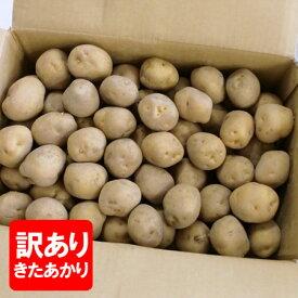 「訳あり」じゃがいも 北海道 きたあかり 北海道産 じゃがいも 北あかり 10kg Mサイズ 価格 1188円 北海道 野菜 黄色いじゃがいも キタアカリ 栗じゃが
