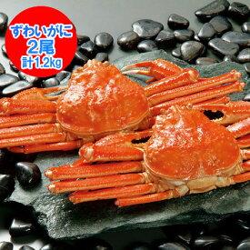 浜ゆで ズワイガニ姿 ズワイガニ ボイル 冷凍 ずわい蟹 2尾 で1.2kg(1200 g) ズワイガニ ギフト 贈答用 価格 7500 円 ズワイガニ 姿 北海道から