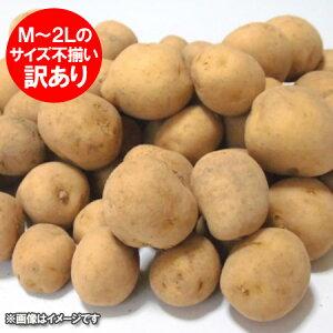 訳あり じゃがいも 北海道 じゃが芋 きたあかり 北海道 北湯沢産(北海道 伊達 市) じゃがいも 北あかり 10kg(サイズ 不揃い M〜2Lサイズ) 価格 1598円 わけあり じゃがいも キタアカリ ワケあり