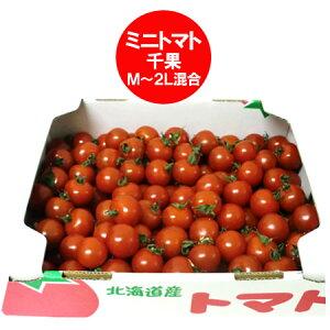 訳あり トマト(ミニトマト) 送料無料 北海道 トマト M〜2Lサイズ 6kg(6キロ) 価格 6480円 無撰別