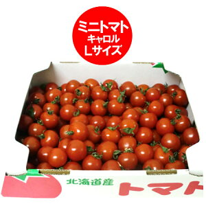 トマト(ミニトマト) 送料無料 北海道 トマト Lサイズ 6kg(6キロ) 価格 6680円