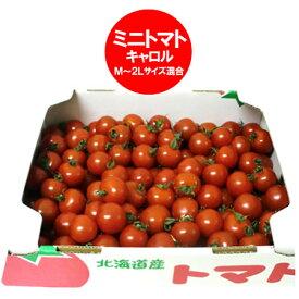 訳あり トマト 送料無料 ミニトマト 北海道 ミニ トマト M〜2Lサイズ 2kg(2キロ) 価格 2980円 わけあり トマト/とまと 無撰別