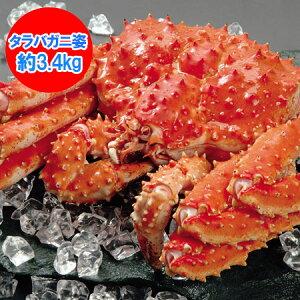 かに 送料無料 タラバガニ ボイル たらば蟹 姿 たらばがに を存分に堪能できるボリュームの、浜ゆで たらば蟹 姿 1尾/約3.4kg 価格 38500円