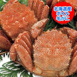 けがに 北海道産 毛蟹 送料無料 毛ガニ 特大 浜茹で毛がに 1kg(1000 g)×2尾 価格 20000 円 ポッキリ 送料無料