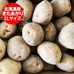 きたあかり 送料無料 北あかり 北海道産 じゃがいも きたあかり 10kg 2Lサイズ 価格3980円 北海道 ジャガイモ キタアカリ