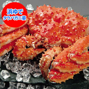 かに 送料無料 タラバガニ ボイル たらば蟹 姿 たらばがに を存分に堪能できるボリュームの、浜ゆで たらば蟹 姿 1尾/約3.8kg 価格 39800円