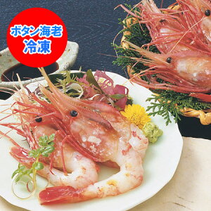 ボタンエビ 刺身 送料無料 ボタン海老 北海道から発送 大ぶりぼたんえび(8〜12尾) 500 g 価格 5000 円