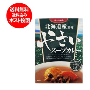 北海道 野菜 スープカレー 送料無料 北海道産 野菜 スープカレー 1人前をメール便 送料無料でお届け やさい スープカレー 送料無料 200 g 価格 800 円