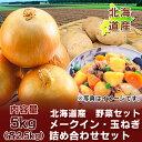北海道 じゃがいも 送料無料 メークイン 北海道産 野菜セット 北海道産 メークインとたまねぎ 野菜セット 5kg 詰合せ …