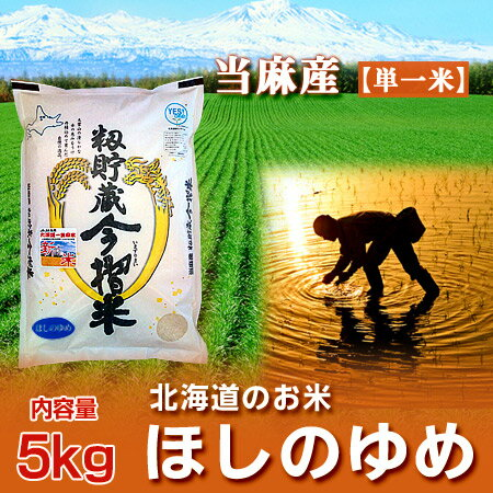 29年度 【ほしのゆめ】 北海道 米当麻産 籾貯蔵 今摺米 ほしのゆめ 米 内容量:5kg