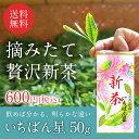 早摘み宇治新茶2017|煎茶いちばん星(50g)|5本注文で1本無料サービス中!