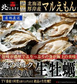 北海道厚岸産「マルえもん」生牡蠣 殻付きLサイズ×10個 カキナイフ・軍手付【産地直送】(90〜120g未満/個) カキ かき