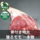 【北海道産】【超お買い特】エゾシカ肉/鹿肉/ジビエ/ 骨付き後ろモモ肉 4〜5キログラム【超特大】【無添加】