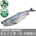 【北海道産】献上西別鮭 まるごと姿一本 甘塩造り【極上】【北のグルメ】