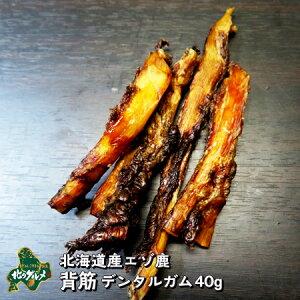 【北海道産食材】えぞ鹿肉/鹿肉/エゾシカ肉/ジビエ/背筋/デンタルガム 40g【ペット用品】
