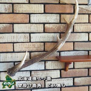 【本物の鹿角使用】鹿角のハンガー ビス有り【上質なインテリア】