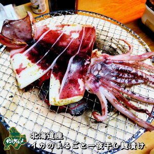 【北海道産】イカのまるごと一夜干し 麹漬け【食べ応え抜群!】