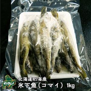 【北海道産(別海産)】新物 厳冬の北海道でしか味わえない味覚!氷下魚 コマイ 1キログラム【北のグルメ】