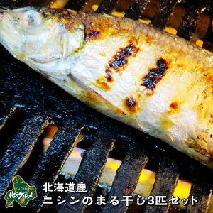 【北海道産】ニシンのまる干し 3匹セット【お買い得】
