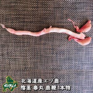 【北海道産 超希少】鹿の陰茎 睾丸 鹿鞭 1本物 新物 国産 1本【無添加】