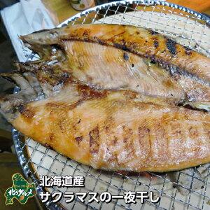 【北海道産】サクラマスの一夜干し【高級魚】