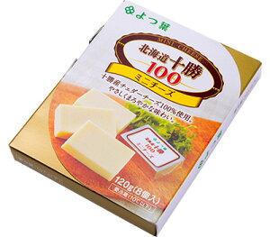 よつ葉 北海道十勝 100 ミニチーズ 120g×2箱