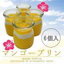 【6個入り☆】とろける☆特製マンゴープリン!完熟マンゴー使用●夏季限定!【ネット限定】10P20Nov15