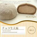 【ネット限定販売!!】チョコ生大福 6個入り 10P27May16