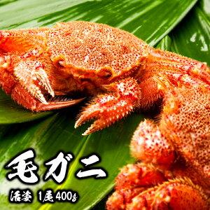 毛ガニ 希少な知床・羅臼産 400g 活姿 採れたての毛蟹を新鮮なうちにお届け! 毛蟹 毛カニ 毛かに 毛がに カニ 蟹