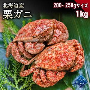 栗ガニ 北海道産 200g〜250gサイズ 1kg(4〜6尾) 小ぶりでもしっかりと濃いカニの出汁とカニミソが楽しめます! 栗蟹 クリガニ カニ 蟹