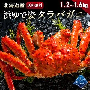 【今だけ5,000円引き&3,000円OFFクーポン】タラバガニ 北海道・オホーツク海産 【浜茹で急速冷凍 姿】 1.2kg〜1.6kg 栄養価の高い身の引き締まったタラバガニ たらばがに 蟹 カニ かに