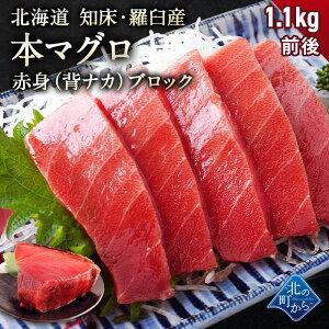 本マグロ 赤身 ブロック 1.1kg前後 北海道 知床・羅臼産 流通僅かなレア商品!あっさりした旨みの赤身がたっぷり楽しめる背ナカ! クロマグロ まぐろ 鮪