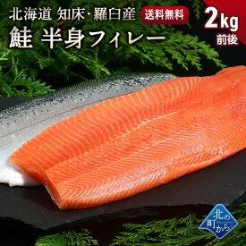 鮭 知床・羅臼産 鮭半身フィレー 1.7kg〜2.3kg 脂ものっており、クセが少なくとろっとして濃厚で甘みのある味です! サケ さけ サーモン さーもん