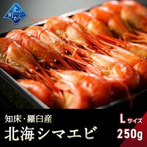 シマエビ 知床・羅臼産 北海シマエビ大250g 目安12尾前後 新鮮な素材の甘みと塩加減にこだわった極上逸品!羅臼の味をご賞味下さい!シマエビ 海老 しまえび