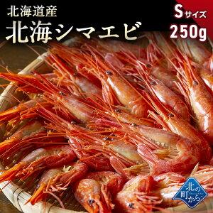 シマエビ 北海道産 北海シマエビ小250g 目安22尾前後 新鮮な素材の甘みと塩加減にこだわった極上逸品!シマエビ 海老 しまえび