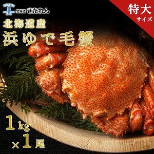 北海道産 特大毛蟹 カニ 毛ガニ かに 1kg 蟹 かに 特大ジャンボ 毛かに 毛がに 1尾 1kg 送料無料 姿 お歳暮 ギフト kani 海鮮