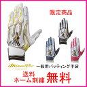 【ネーム刺繍無料】ミズノプロ(mizuno pro) バッティング手袋 シリコンパワーアークMI 両手用 1EJEA039【グローブ/送料無料/限定カラー】