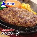 宗谷岬牧場のハンバーグ 120g×4個入り お試し 【ハンバーグ 牛肉 和牛 美味しい おい...