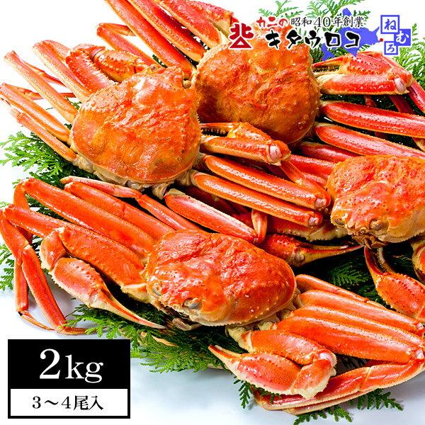 本ずわいがに姿 3〜4尾入 計2kg【送料無料】 鍋 かに カニ 蟹 ズワイ ずわい ずわい蟹 ka2