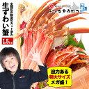 かに カニ 【1,500円OFFクーポン】特大カット済み本ずわいかにしゃぶ 元祖メガ盛 1.5kg 蟹 ズワイガニ ずわいがに む…