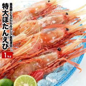 特大ぼたんえび 14尾前後入 1kg 送料無料 エビ ボタンエビ 海鮮 シーフード エビ 海産物