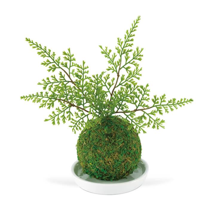 KISHIMA キシマ 消臭アーティフィシャルグリーン 和盆栽 WA BONSAI ARTIFICIAL GREEN KH-61057 Shinobu シノブ 観葉植物 CT触媒