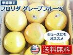 【送料無料】フロリダ産グレープフルーツ【fruits】