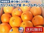【送料無料】【新商品】カリフォルニア産ネーブルオレンジ18kg(72玉)NavelOrangeCalifornia【fruits】