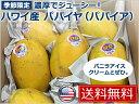 【送料無料】【新商品】ハワイ産 パパイヤ(パパイア)