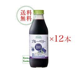 送料無料順造選500mlブルーベリー100%1ケース(12本入り)