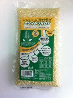 ホワイトソルガム粒【輸入食品】