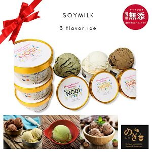 NOGI 豆乳 アイスクリーム 3種類6個セット(さし草アイス2個、プレーンアイス2個、チョコアイス2個) 添加物不使用、白砂糖不使用。植物繊維素材で作った 健康アイス(氷菓)